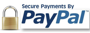 secure-checkout-paypal