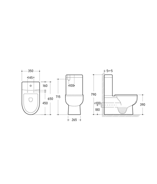 Wall Faced Toilet Suite Specifications